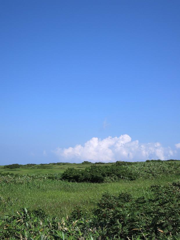 草原|月山八合目、弥陀ヶ原湿原 044