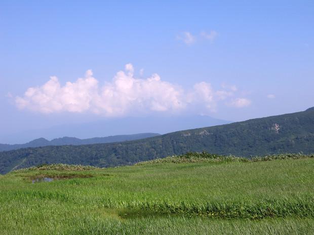 草原|月山八合目、弥陀ヶ原湿原 056