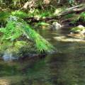 流水サムネイル