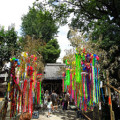 夏祭り|七夕サムネイル