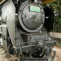 蒸気機関車|D5189サムネイル