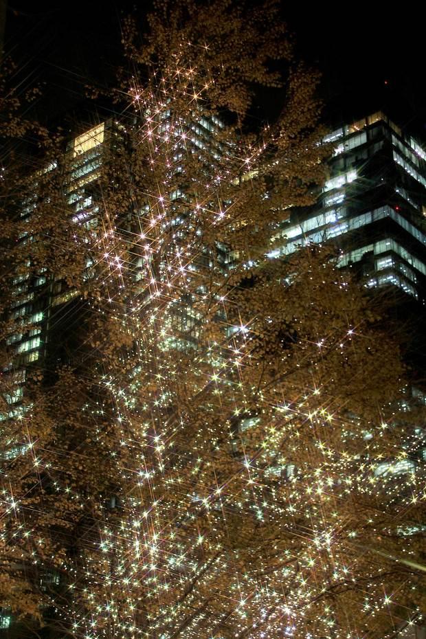 丸の内クリスマスイルミネーション041
