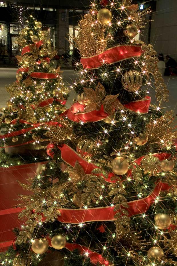 丸の内クリスマスイルミネーション060