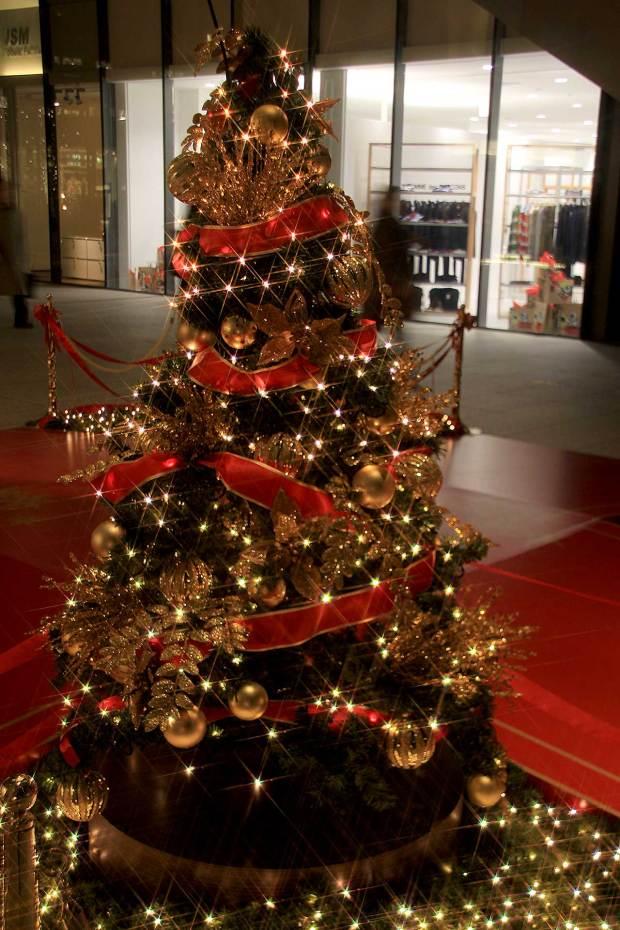 丸の内クリスマスイルミネーション|クリスマスツリー062