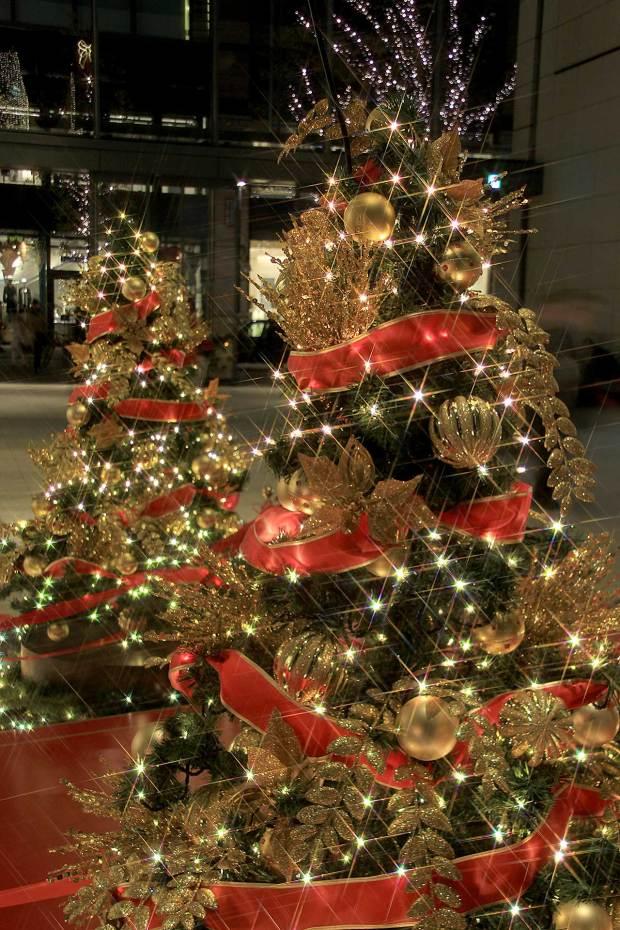 丸の内クリスマスイルミネーション|クリスマスツリー065