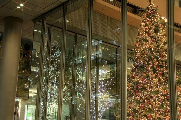 丸の内クリスマスイルミネーション|クリスマスツリー069