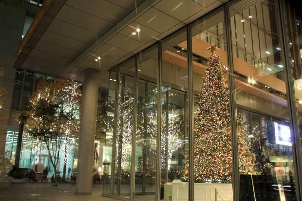 丸の内クリスマスイルミネーション|クリスマスツリー071