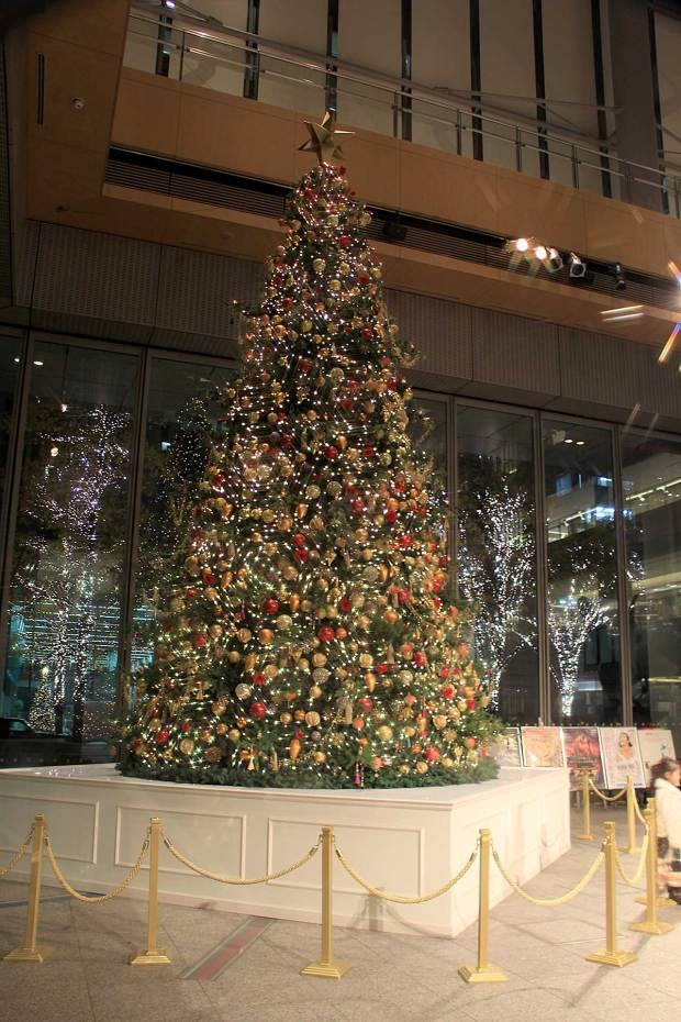 丸の内クリスマスイルミネーション|クリスマスツリー072