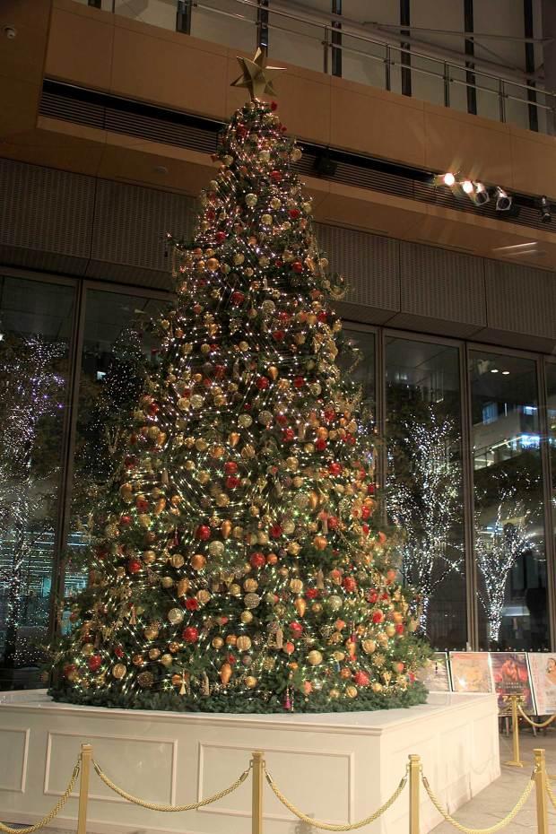 丸の内クリスマスイルミネーション|クリスマスツリー073