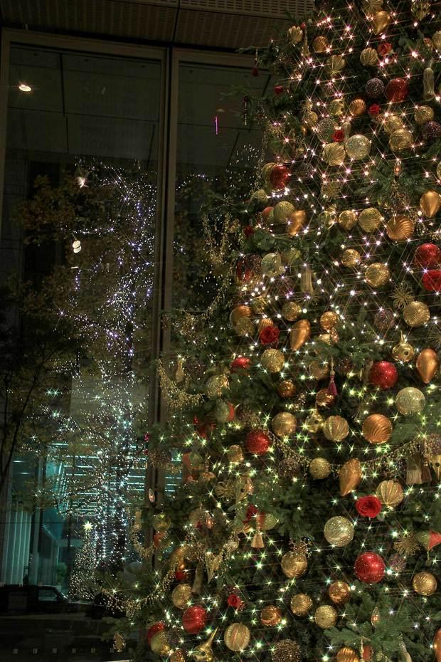 丸の内クリスマスイルミネーション|クリスマスツリー075