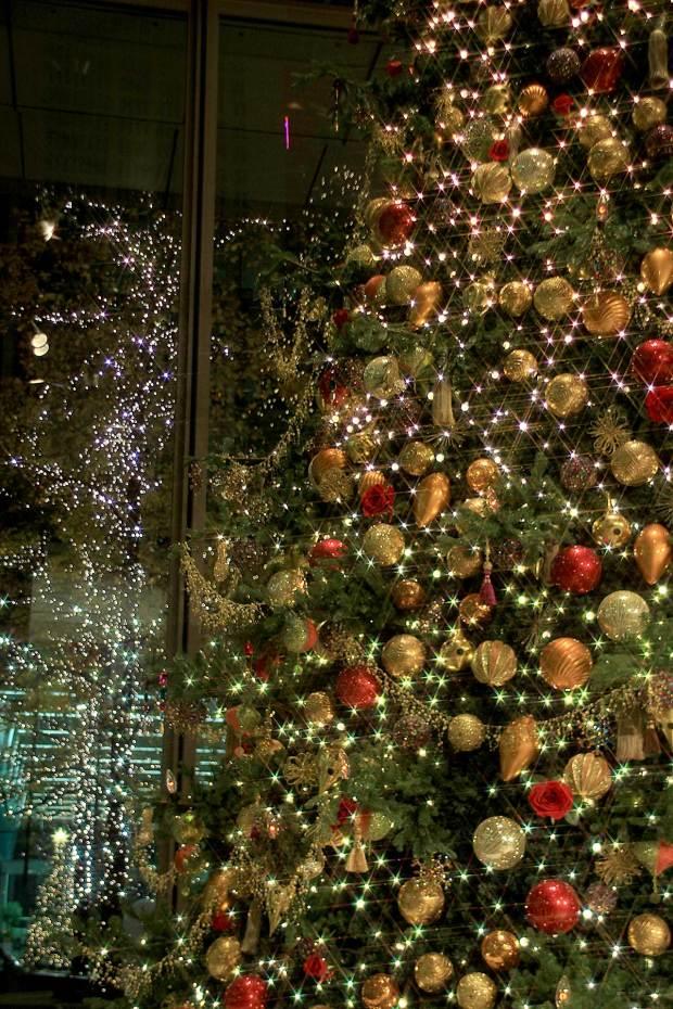 丸の内クリスマスイルミネーション|クリスマスツリー076