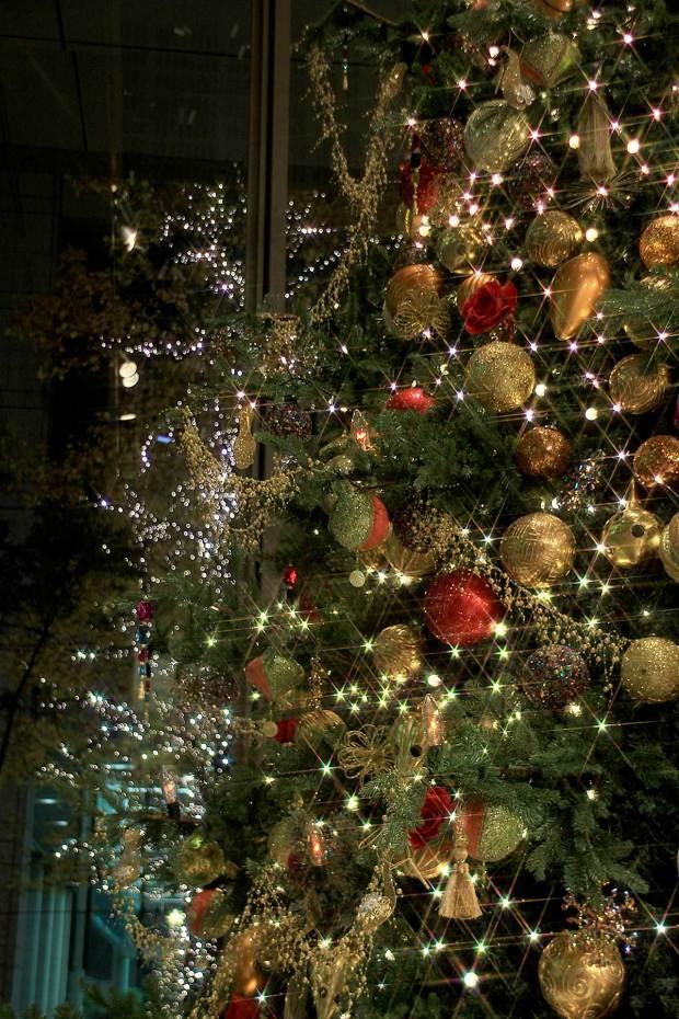 丸の内クリスマスイルミネーション|クリスマスツリー077