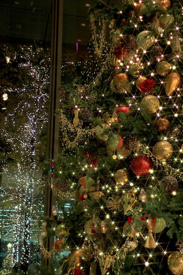 丸の内クリスマスイルミネーション クリスマスツリー078