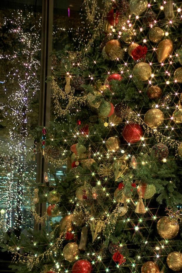 丸の内クリスマスイルミネーション|クリスマスツリー079