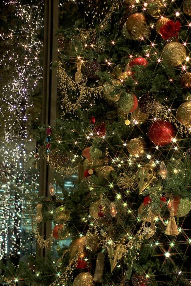 丸の内クリスマスイルミネーション クリスマスツリー080