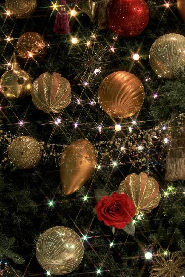 丸の内クリスマスイルミネーション|クリスマスツリー082