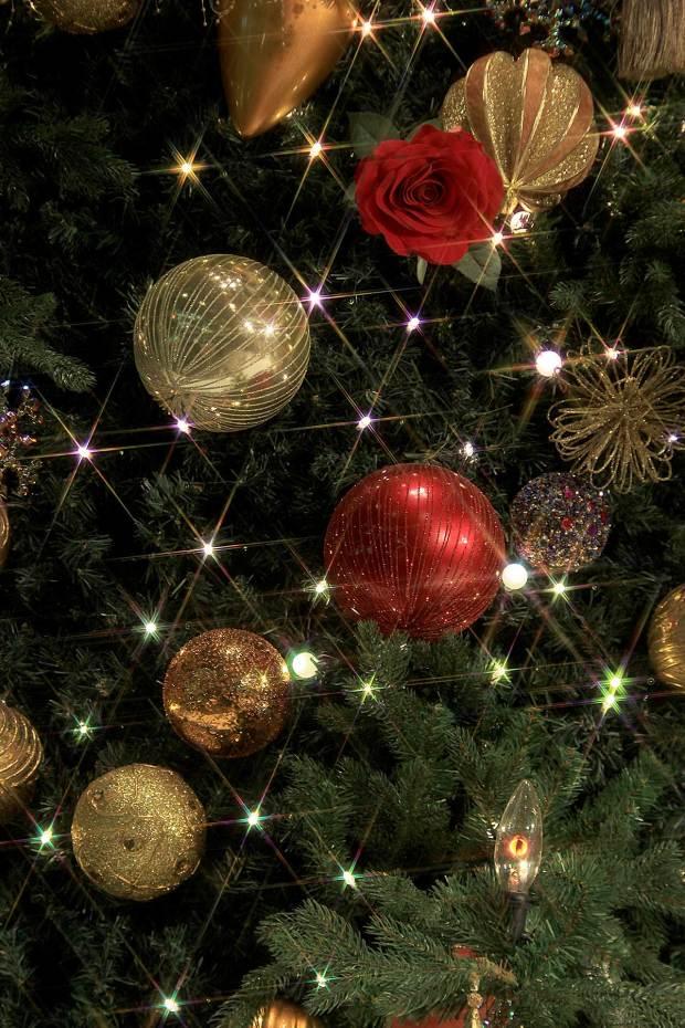 丸の内クリスマスイルミネーション|クリスマスツリー083