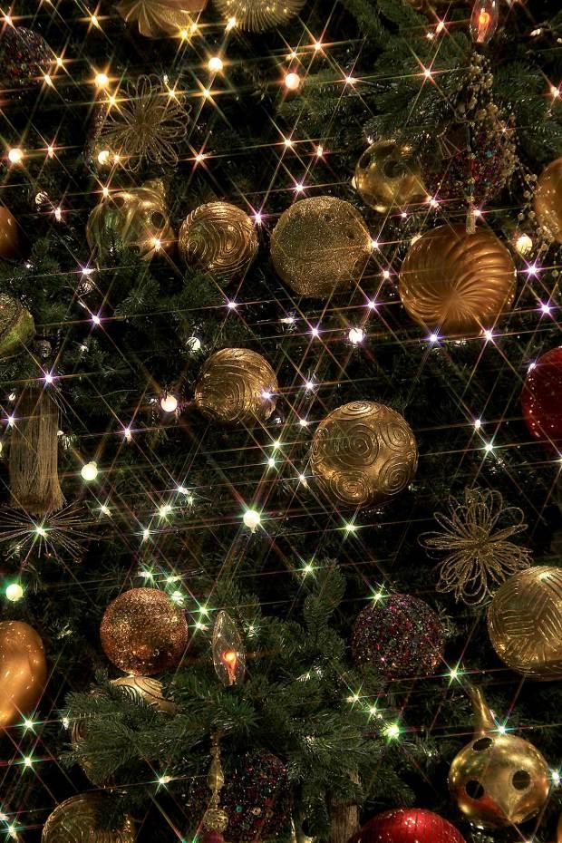 丸の内クリスマスイルミネーション|クリスマスツリー084