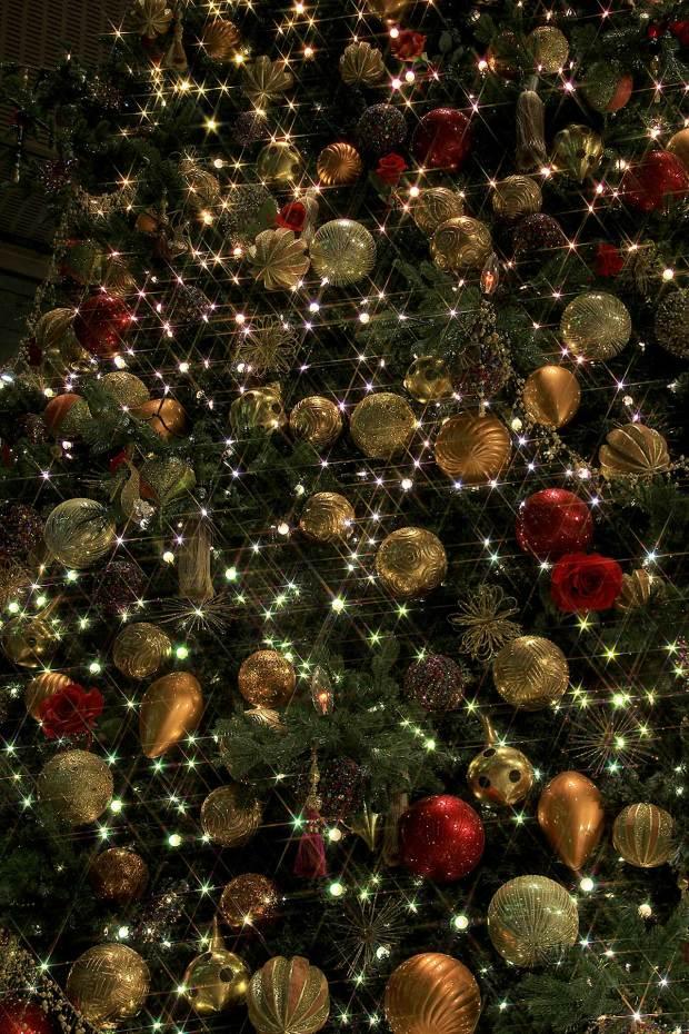 丸の内クリスマスイルミネーション|クリスマスツリー085