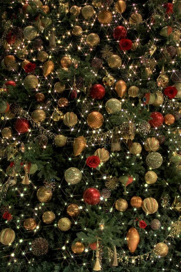 丸の内クリスマスイルミネーション クリスマスツリー086