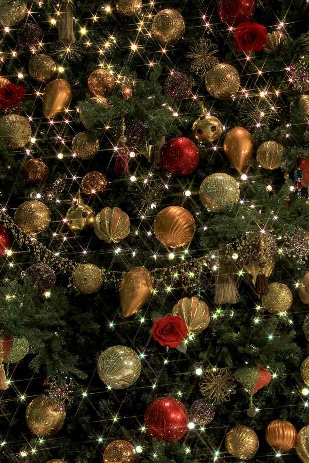 丸の内クリスマスイルミネーション|クリスマスツリー087