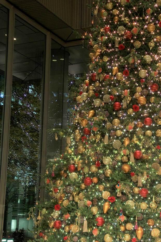 丸の内クリスマスイルミネーション|クリスマスツリー090