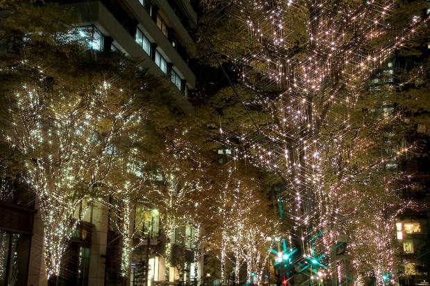 丸の内クリスマスイルミネーション|クリスマスツリー094