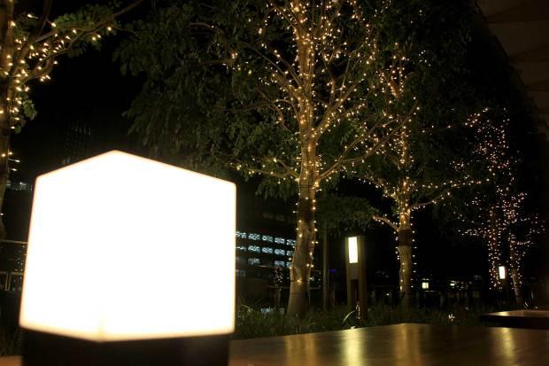 丸の内クリスマスイルミネーション|クリスマスツリー100