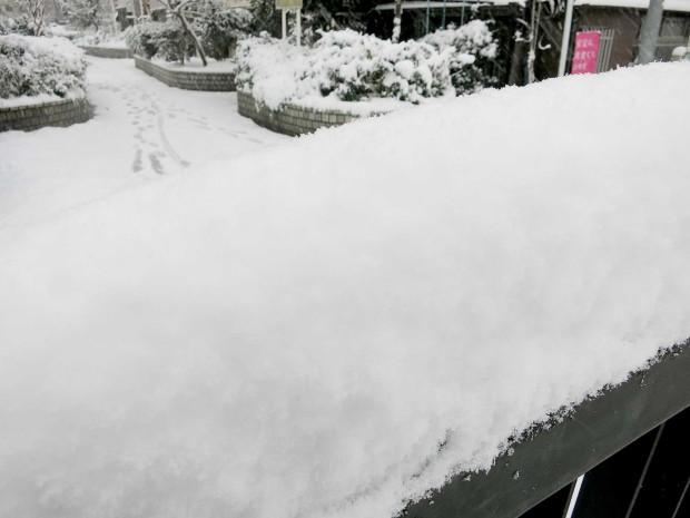 雪景色090