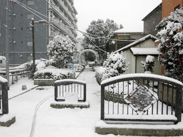 雪景色091
