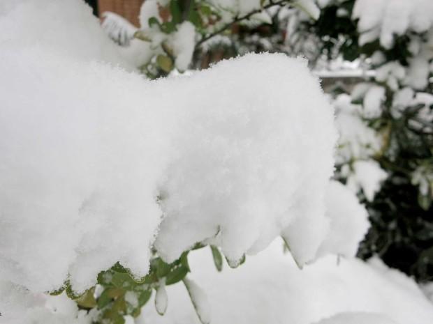 雪景色096