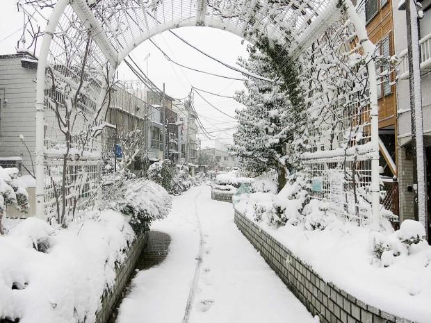雪景色097
